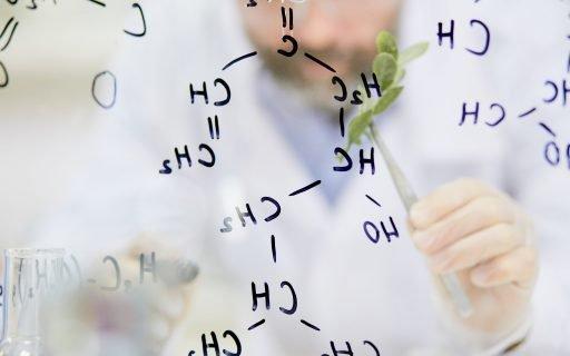 Ciências Biológicas: confira o que essa carreira pode te proporcionar